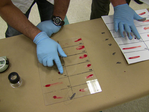 The Evolution Of Blood Stain Pattern Analysis Verdicts In The Courtroom Center For Statistics And Applications In Forensic Evidence