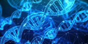 Ensuring Accurate Analysis of Biological Evidence: The NIST Human DNA Standard